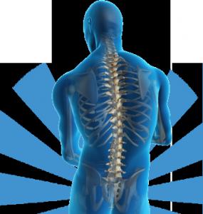 fisioterapia – prevenzione, diagnosi, cura e riabilitazione