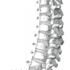 osteopatia dott Christian Gatti